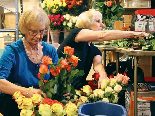 SARAH MATOTT - CURRENT-ARGUS   LaWanda Scholl and Pam Langlitz work to get 250 Memorial Day roses cut and placed into water on Thursday at Candlewood Cards and Gifts.