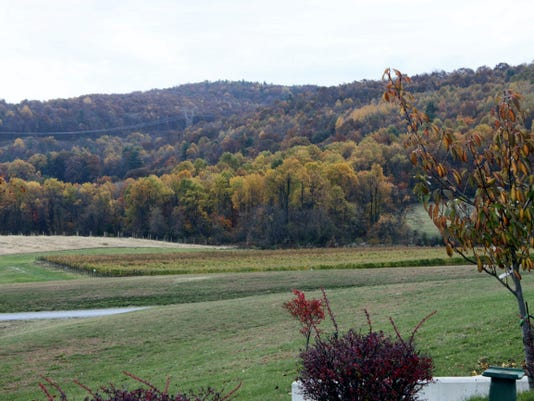 Autumn scenery from the apple orchard of Hauser Estate and Winery, Biglerville, which will host a scenic Hard Cider Run 5K event Aug. 22.