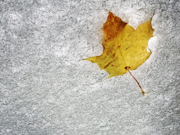 Snow covers a windshield, covering over a lone leaf, as roughly an inch of snow blanketed the Rochester area Tuesday.