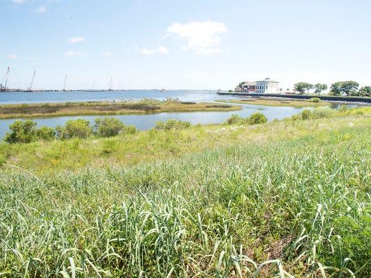 living shorelines-Pensacola