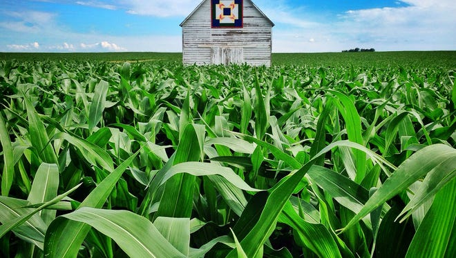 Thriving corn surrounds a quilt barn under the summer sky west of Perry along Highway 141 on Tuesday, June 24, 2014.