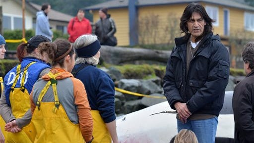In this photo provided by the Victoria Marine Science Association, Harold Joe, right, performs an indigenous smudging ceremony blessing a dead orca and her calf at Bates Beach, Comox, British Columbia. Biologists and onlookers were also invited to spread crushed and dried cedar with their prayers for the Orca and baby. The necropsy on the endangered orca found dead off Vancouver Island showed it was pregnant with a full-term fetus, and that someone removed several teeth from the dead killer whale before it could be examined. Experts had speculated the death may have arisen from birth complications. Biologists have yet to determine the cause of death.