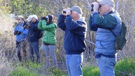 There's a birding event Saturday in Ventura.