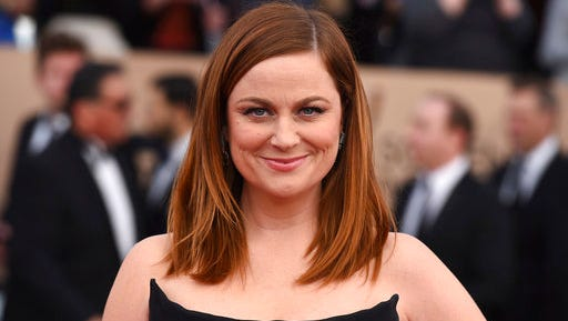 "FILE -  In this Jan. 30, 2016, file photo, Amy Poehler arrives at the 22nd annual Screen Actors Guild Awards at the Shrine Auditorium & Expo Hall on Saturday, Jan. 30, 2016, in Los Angeles. NBC announced on March 28, 2017, that Poehler is teaming up with her former ""Parks and Recreation"" co-star Nick Offerman for an for an NBC reality competition focused on craft making."