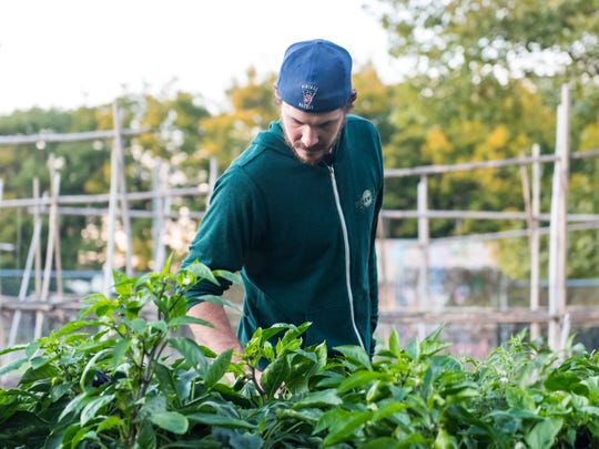 Eli Facchinei, brewer at Tonewood Brewery in Oaklyn, takes a tour of a garden at the Center for Environmental Tranformation, an urban farming school and series of community gardens, in South Camden in 2016.