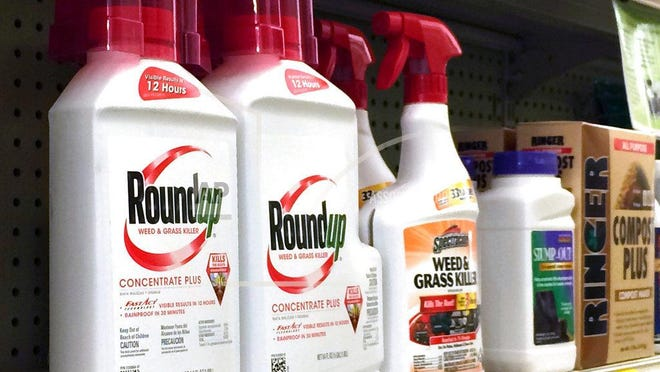 This Jan. 26, 2017, file photo shows containers of Roundup weed and grass killer, a Monsanto brand, on a shelf with other products for sale at a hardware store.