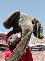 Big Alis the costumed elephantmascotof theUniversity of Alabama.