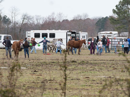 A view of a horse farm on Cherry Walk Road as workers attempt to move horses into a corral on Monday, March 19, 2018.