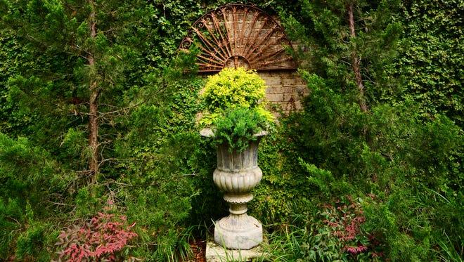A peek into the Faraugia garden.