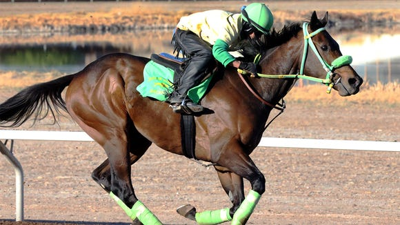 Rider Jose Barajas takes Conquest Mo Money for a lap around the track earlier this year at Sunland Park Racetrack & Casino. He ran second in the Arkansas Derby.