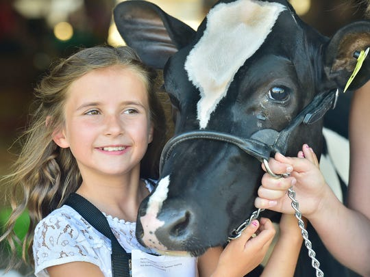 Addison Harshman, spends time with her heifer, Hailey, at the 2018 Franklin County Fair