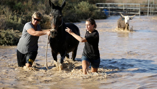 Melanie Vallet, left, and Madison Bush rescue a mule caught in floodwaters Sept. 9, 2014, in Overton, Nev.