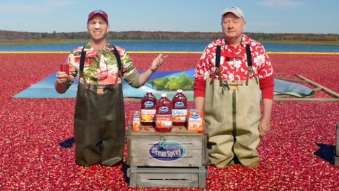 A screenshot of the Ocean Spray commercial shot in the Warrens area.