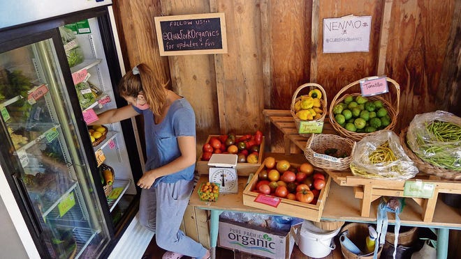 Tasha Slotinck organizes the produce cooler at Clark Fork Organics in Missoula, Montana.