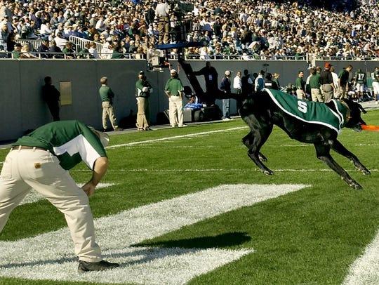 Zeke the Wonderdog II, like other canine performers,