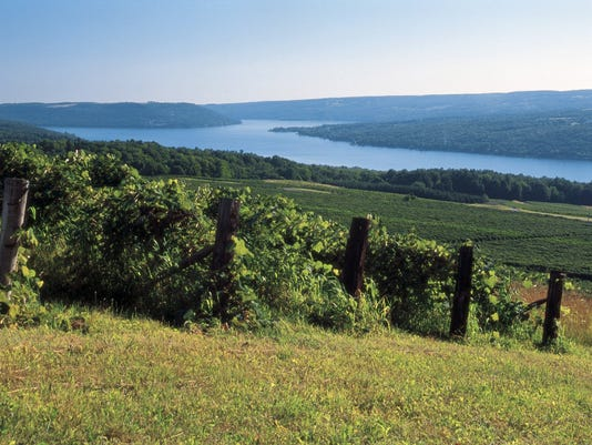 Finger Lakes wine country