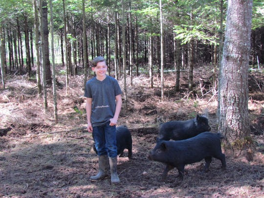 "Everett Newsom is affectionately known as the ""pig whisperer"" at Bear Branch Farms, located in rural Stayton's Mt. Pleasant area."