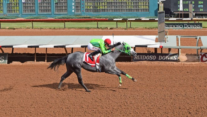 The undefeated Running Dragon in the $409,410 Zia Quarter Horse Futurity and the Todd Fincher-trained six qualifiers in the $173,171 Mountain Top Thoroughbred Futurity lead the action during the Zia Festival this weekend at Ruidoso Downs.