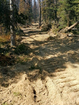 A fuel break is constructed at the Trail 467 fire.