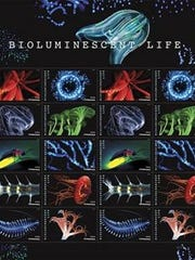 Postage stamps featuring images of bioluminescent sea creatures will be unveiled Feb. 22 at the Sunrise Theater in Fort Pierce