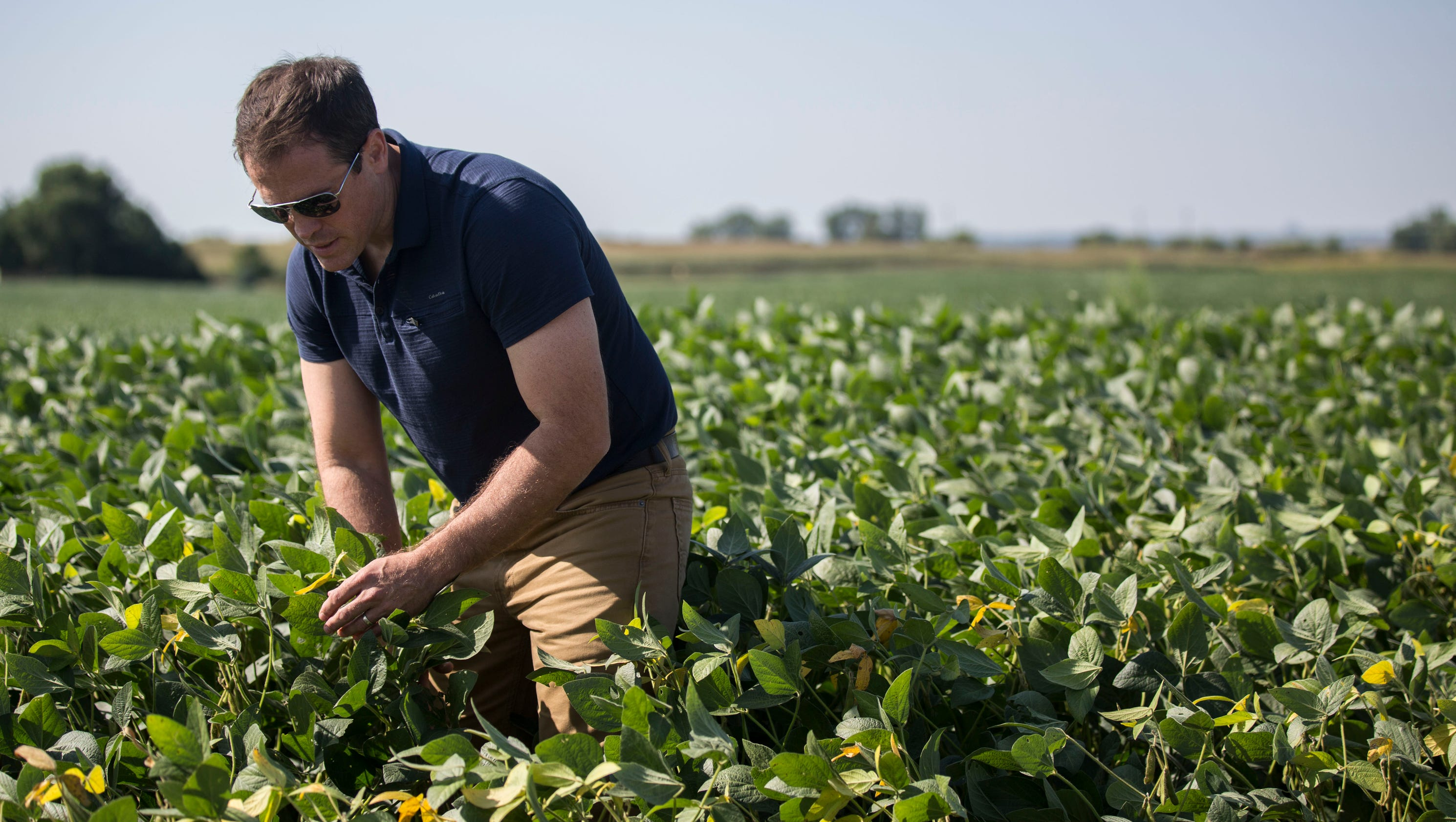 Local farmers concerned about impact of tariffs - News