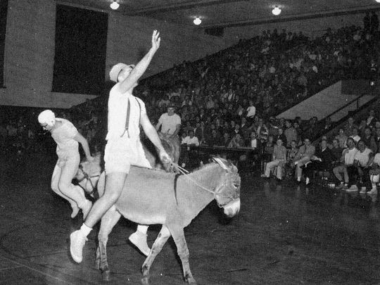 "The Technical High School Letterman's Club sponsored a ""donkey ball"" game during the 1960-1961 school year. Pictured here, Mr. Dolan tallies two while Mr. Froiland dismounts over the hump of a donkey."