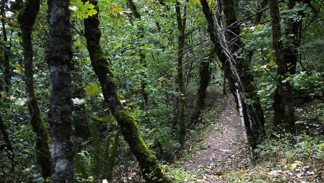 Rooster Rock State Park has reopened in the Columbia River Gorge.