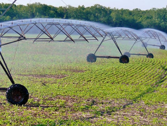 Parched soybeans