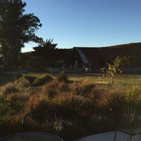 Stolo Family Vineyards in Cambria, Calif. manages about 23 acres of grapes.