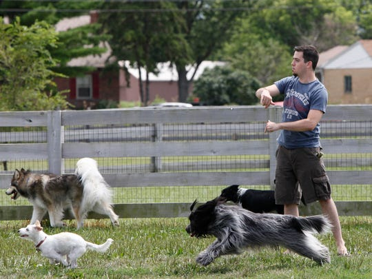 Matthew Burke plays fetch with his dog Lizzy and all