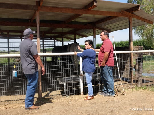 Changing Minds One at a Time founder Michael Alvarez, left, speaks to Davidian Farms owners Alan and Phyllis Borba.