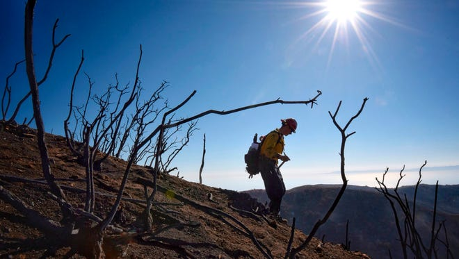 In this photo provided by the Santa Barbara County Fire Department, Santa Barbara County Fire Department Capt. Ryan Thomas hikes down steep terrain below East Camino Cielo to meet with his crew and root out and extinguish smoldering hot spots from the Thomas Fire. Officials estimate that the Thomas Fire will grow to become the biggest in California history before full containment, expected by Jan. 7.