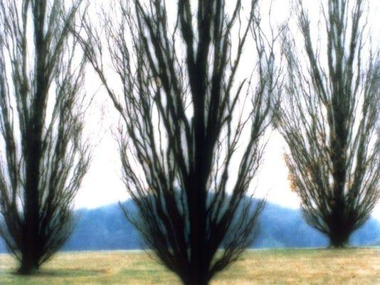 Bernheim-The Natural Muse_Lynn Geeaman(2001)