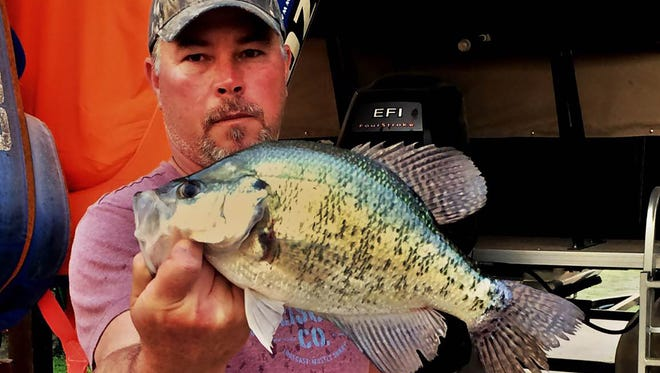 Jeff May of Saltillo said go deep for fall crappie at Bay Springs Lake.