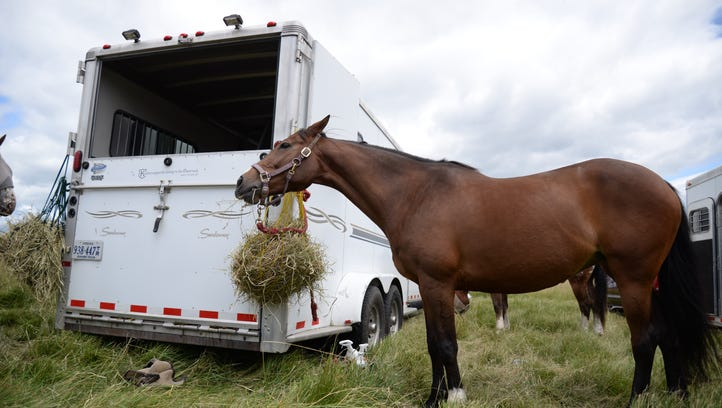 New trailer regulations cause concern for horse owners