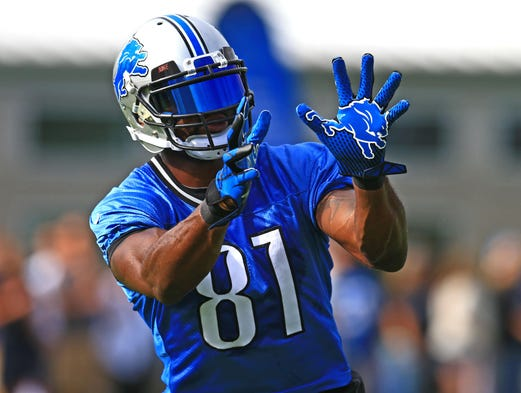 1. Calvin Johnson, Detroit Lions
