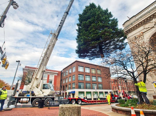 This shot by Paul Kuehnel shows York's Christmas tree being placed on the square a few weeks ago. Ever wonder how many lights they hang on it? Me too. So I asked...