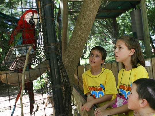 Zoo camp!