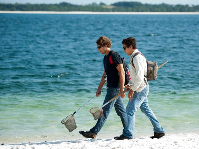 Florida Department of Environmental Protection Beach Oil Monitors David Perkinson, left, and Joey Whibbs, right, search for tar balls along the shore at Fort Pickens during a recent survey.