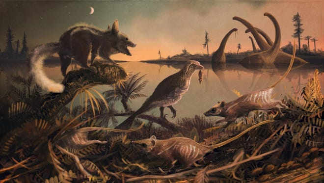 An artist's conception of the small, rat-like creatures that lived 145 million years ago in the shadow of the dinosaurs.