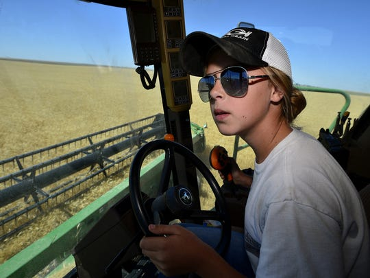 Bailey Gasvoda cuts winter wheat on her family's farm