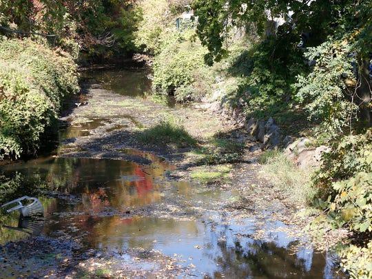 The Sheldrake River runs adjacent to Northrup Avenue in Mamaroneck.