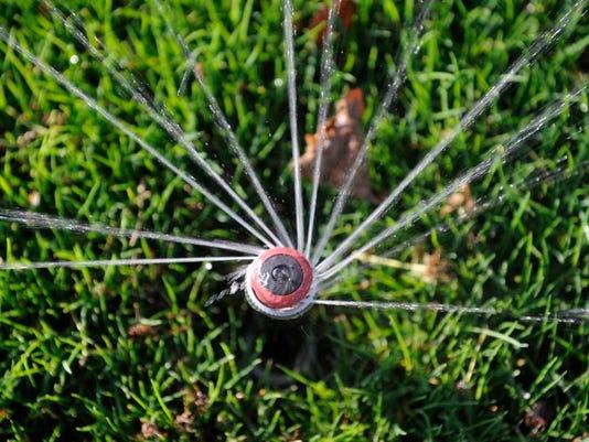 VTD0327_LIVING Lawn_1.jpg