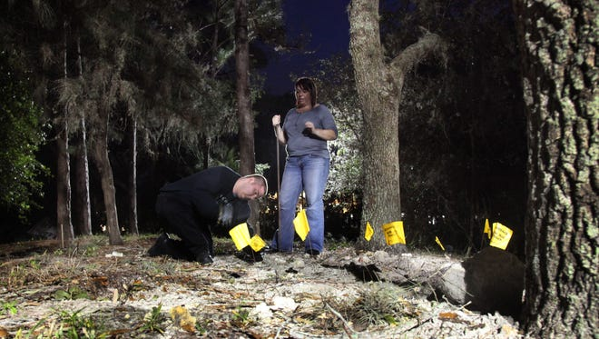 Beth Fraioli, 47, (standing) watches as Brandon Crame, 18, plants flags in the ground to mark a makeshift grave. Fraioli and Crame are students in an advanced crime scene class at Florida SouthWestern State College. The class is investigating a mock crime.