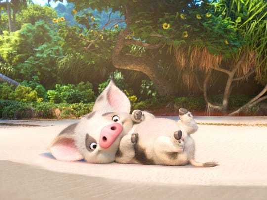 The adorable pig Pua is best friend to the title character of 'Moana.'