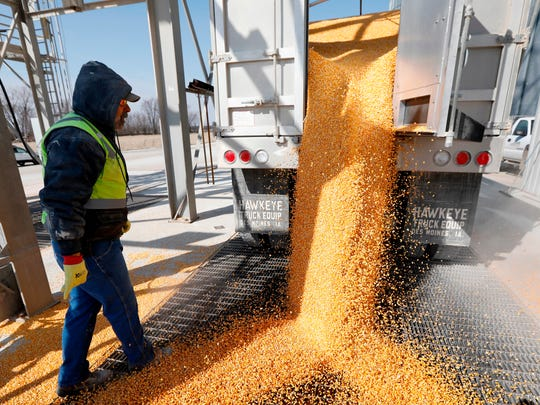 Phil Conklin unloads corn from a truck at the Heartland