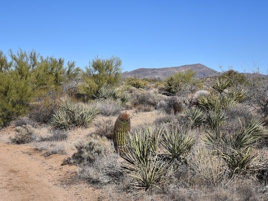 Maricopa Trail