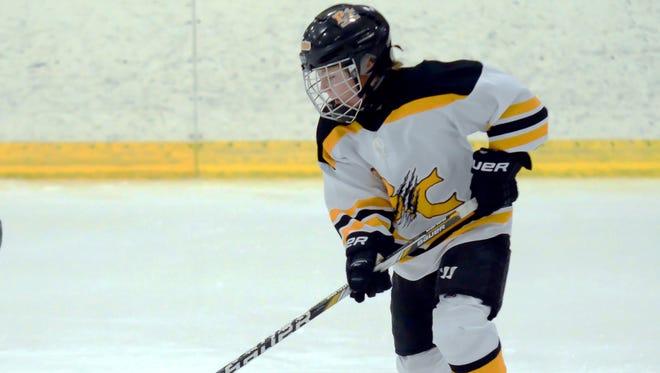 Battle Creek Bruins Pee Week hockey.