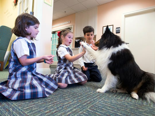 Katherine Peaden, 9, gets a high five from the Gulf Coast Kid's House new therapy dog, Trooper, while her sister, Lauren, 7, and brother, John David, 8, vie for the sheltie's attention.