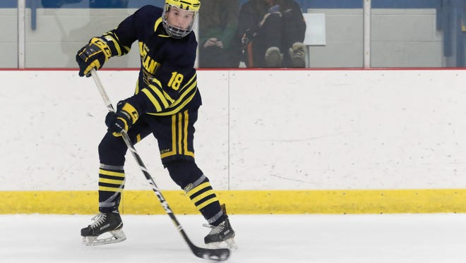 Brenden Tulpa had two goals and one assist for Hartland in a 3-0 victory over Novi on Wednesday, Jan. 24, 2018.